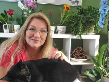 Orchids, Amanda Matthews, and a Cat