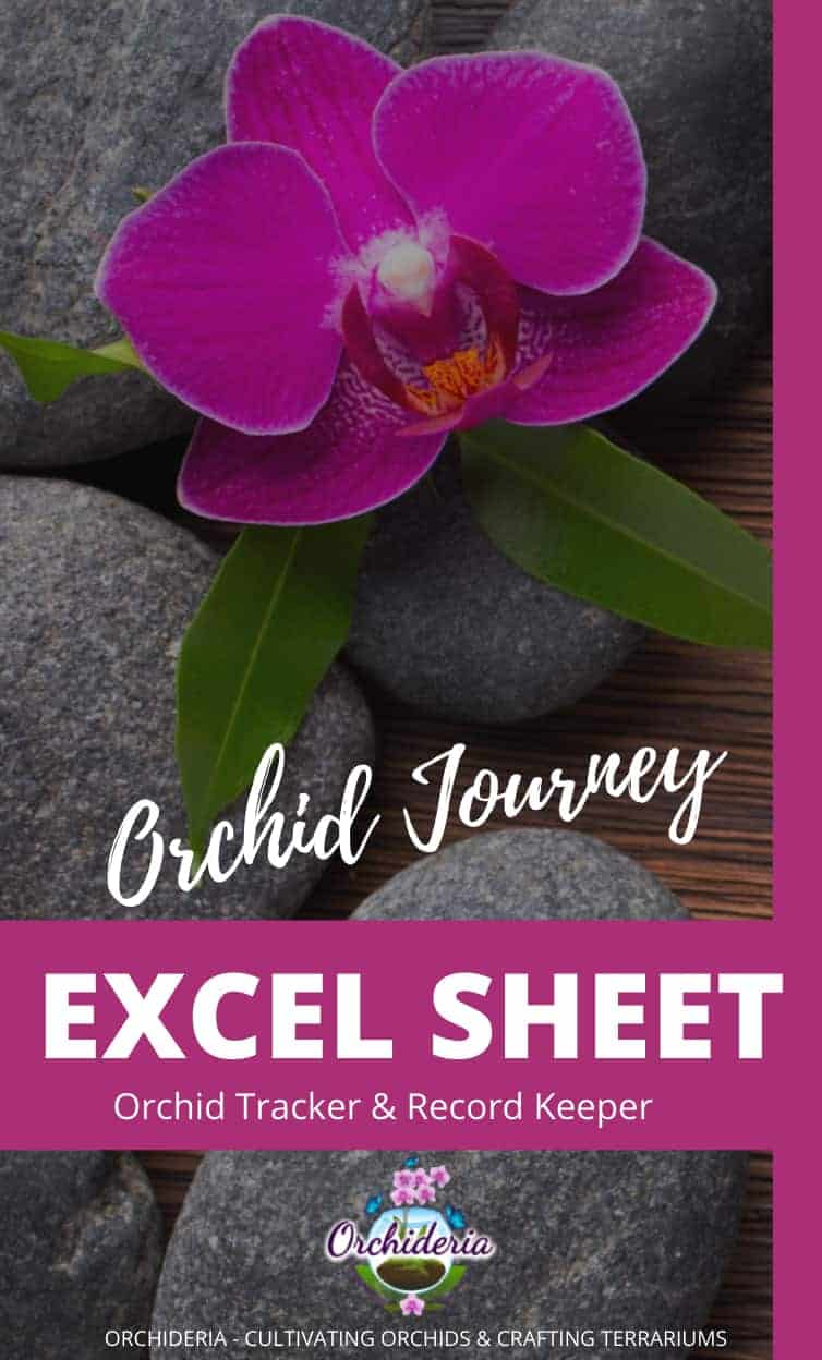orchid Tracker Excel Sheet
