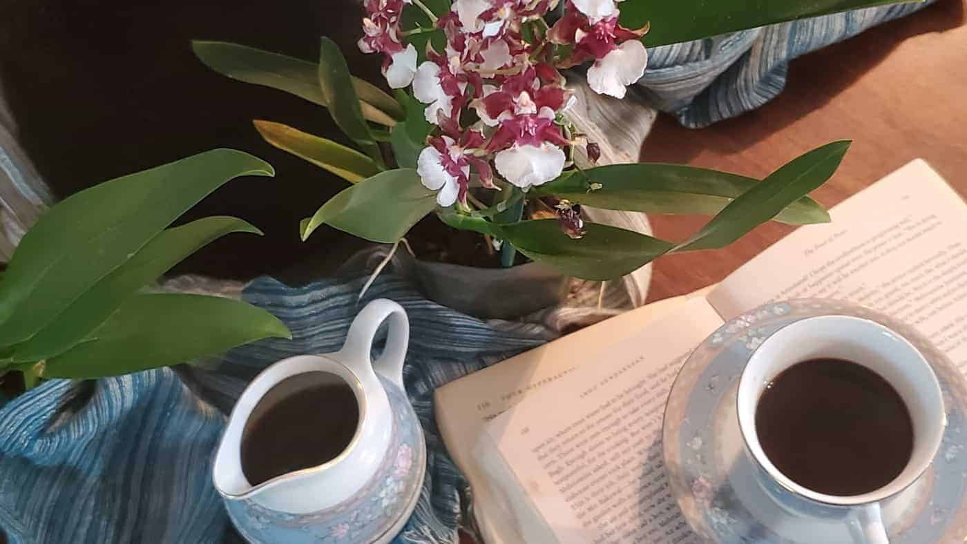 Orchids and Coffee